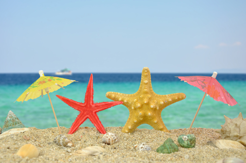 Two starfish under paper umbrellas on a beach